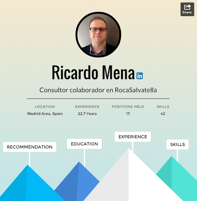 Professional Journey Ricardo Mena